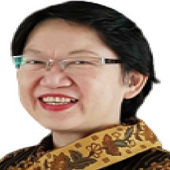 Dr. dr. Laniyati Hamijoyo SpPD-KR, M.Kes