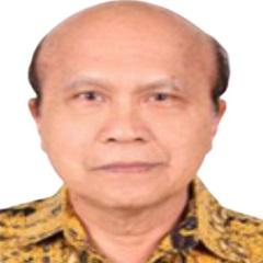 Prof. Dr. dr. Handono Kalim SpPD-KR